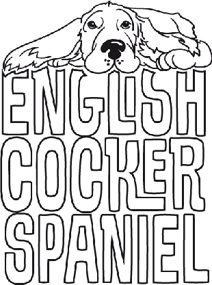 English Cocker