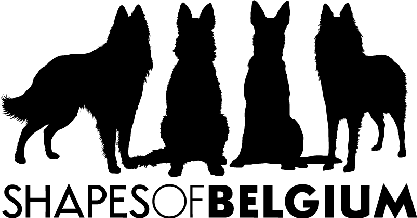 Shapes of Belgium