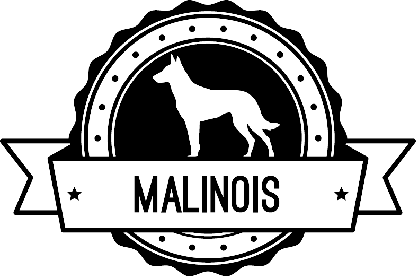 Badge Malinois