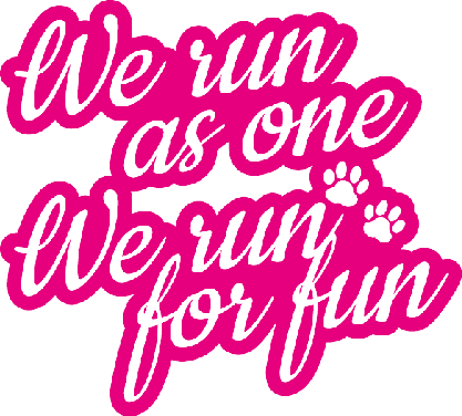 We run for fun