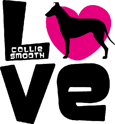 Love Smooth Collie