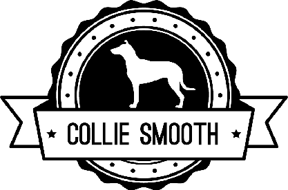 Badge Smooth Collie